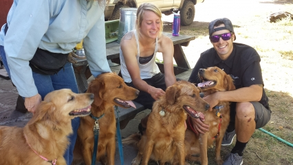 <h5>Watson Family Reunion</h5><p>Watson and his sisters have a play date. The dog at left is not related.</p>