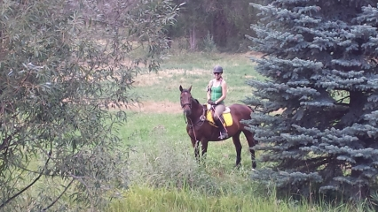 <h5>Lower Pasture Ride</h5><p>We have internal lanes that allow for quick after-work rides. Kalinda and Kalvin enjoy an outing in the lower pasture.</p>