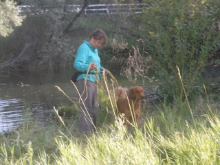 <h5>Watson Pond Play I</h5><p>I keep the leash on Watson most of the time, but especially in the pond in case he gets into trouble and needs rescuing.</p>